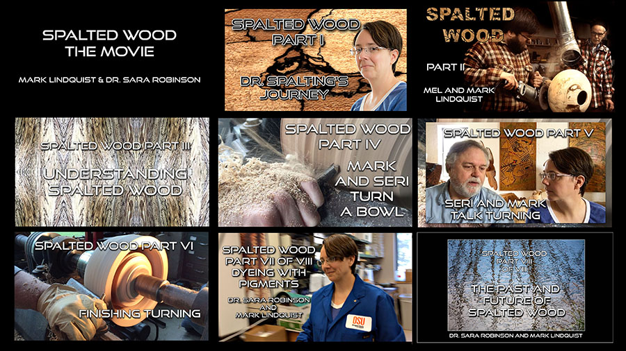 SPALTED WOOD THE MOVIE by Mark Lindquist and Dr. Sara Robinson is on YouTube!